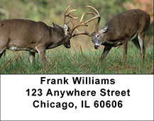 Back to Nature Buck Address Labels